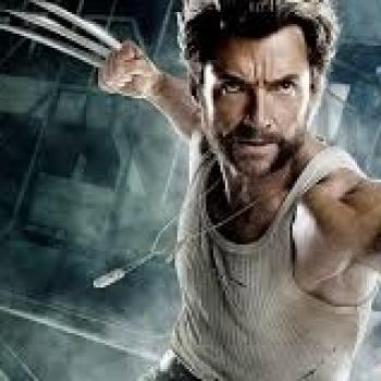 Wolverine XX