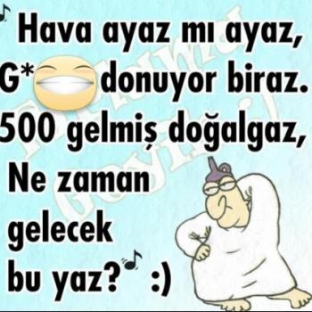 Erol Borek