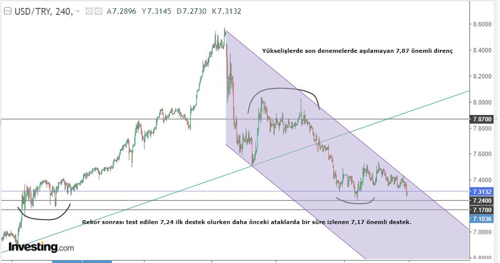 USD / TL 29 January